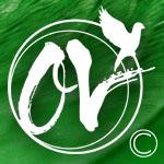 ov-firma_3-copy